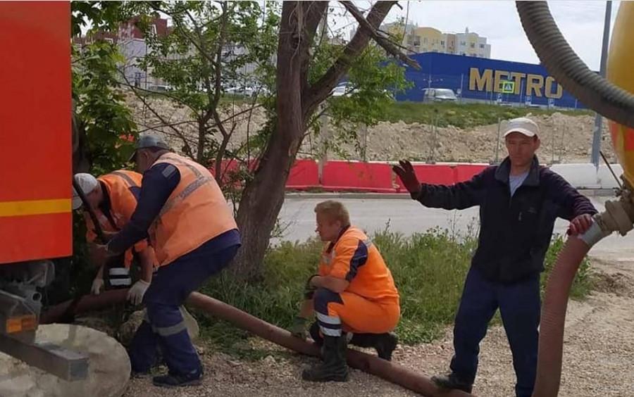 ForPost - Новости : Севсети#1231: Прижившиеся в Севастополе, позорное место и спасение кота
