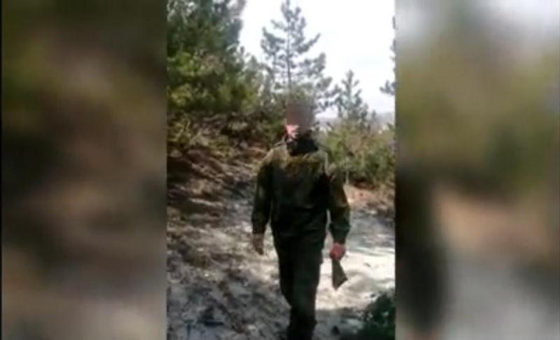ForPost - Новости : Крымский полицейский в одиночку остановил вырубку можжевельника