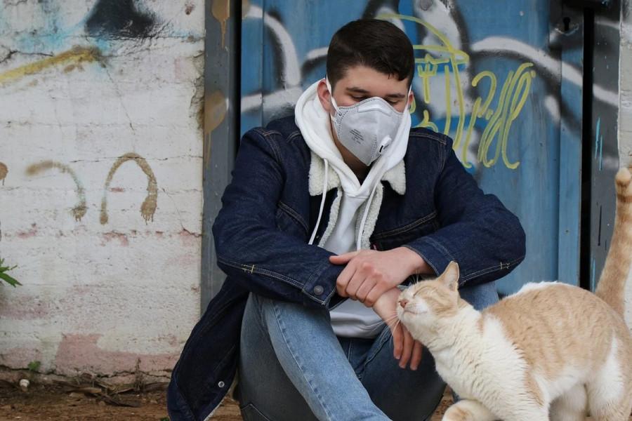ForPost - Новости : Сводка по коронавирусу в Севастополе за 15 мая