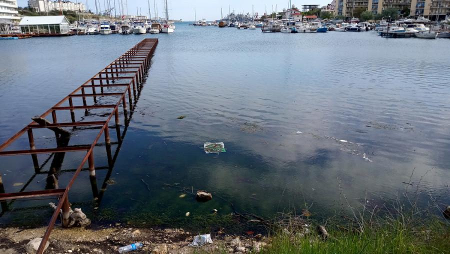 ForPost - Новости : В Стрелецкой бухте Севастополя обнаружен канализационный сток в море