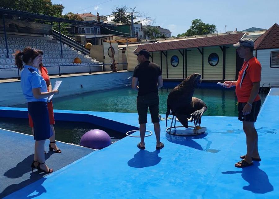 ForPost - Новости : Деятельность дельфинария в Севастополе опять признана незаконной