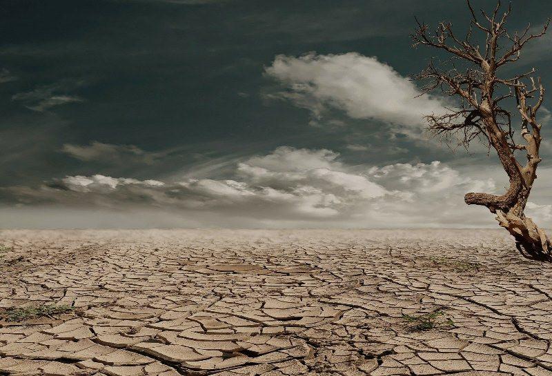 ForPost - Новости : Крым пугают новой сильной засухой