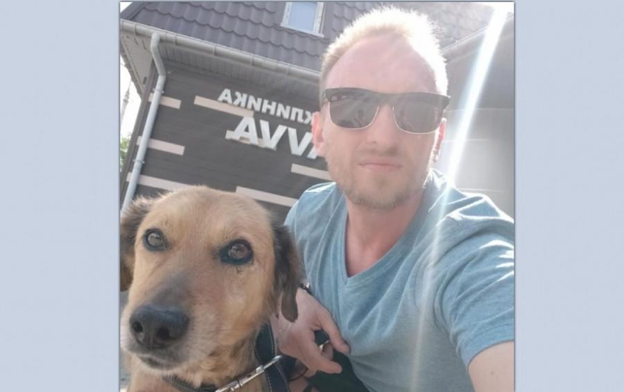 ForPost - Новости : В Крыму пес с перерезанным горлом выжил и переезжает в Ялту