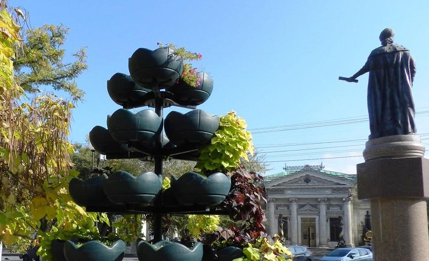 ForPost - Новости : Севсети#1252: Эти забавные мужчины, инфляция в Севастополе и гость-вредитель