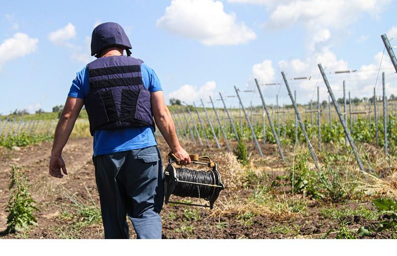 ForPost - Новости : В виноградниках «Золотой Балки» и у Монастырского шоссе прозвучали взрывы