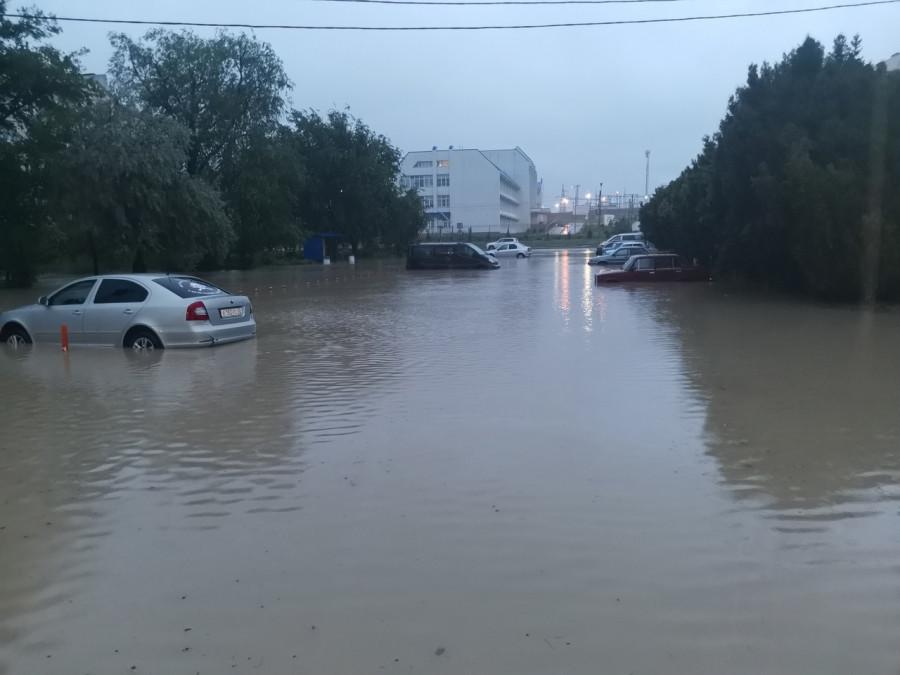 ForPost - Новости : Ливень в Севастополе: рухнувшие деревья, вода в квартирах и плывущие авто