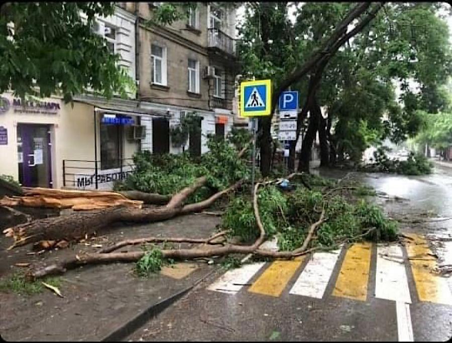 ForPost - Новости : Севсети # 1256. Севастопольские мародёры, подсчёт урона и возвращение платного моря