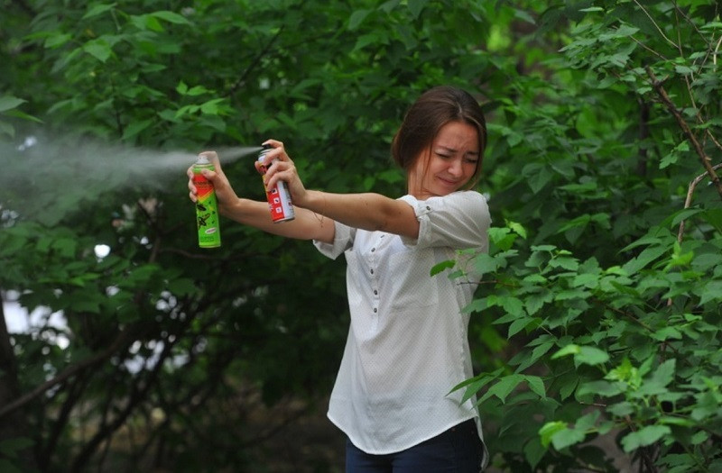 ForPost - Новости : Россиянам назвали лучшие средства от комаров и клещей