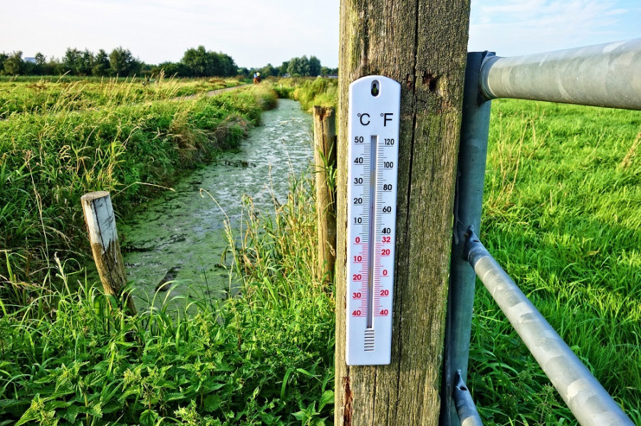 ForPost - Новости : Эксперт заявил, что людям врут про изменение климата