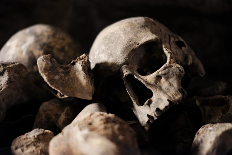 Обнаружены свидетельства эпидемии коронавируса в Азии 20 тысяч лет назад