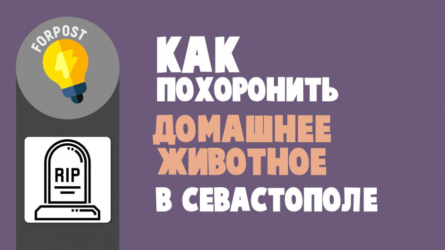 ForPost - Новости : Как похоронить умершее домашнее животное в Севастополе