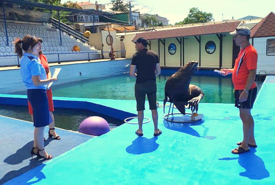 ForPost - Новости : Приставы освобождают набережную Севастополя от дельфинария