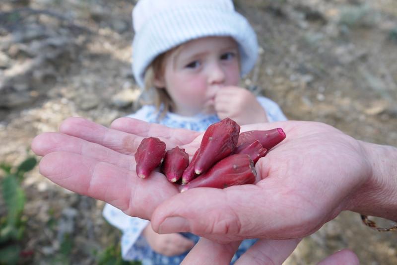 ForPost - Новости : Колючие и съедобные: как в Крыму едят могильные украшения