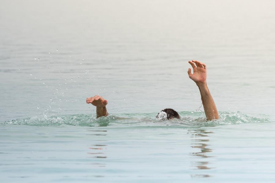 ForPost - Новости : Прогулочный катер протаранил купальщика у пляжа Севастополя, – очевидцы