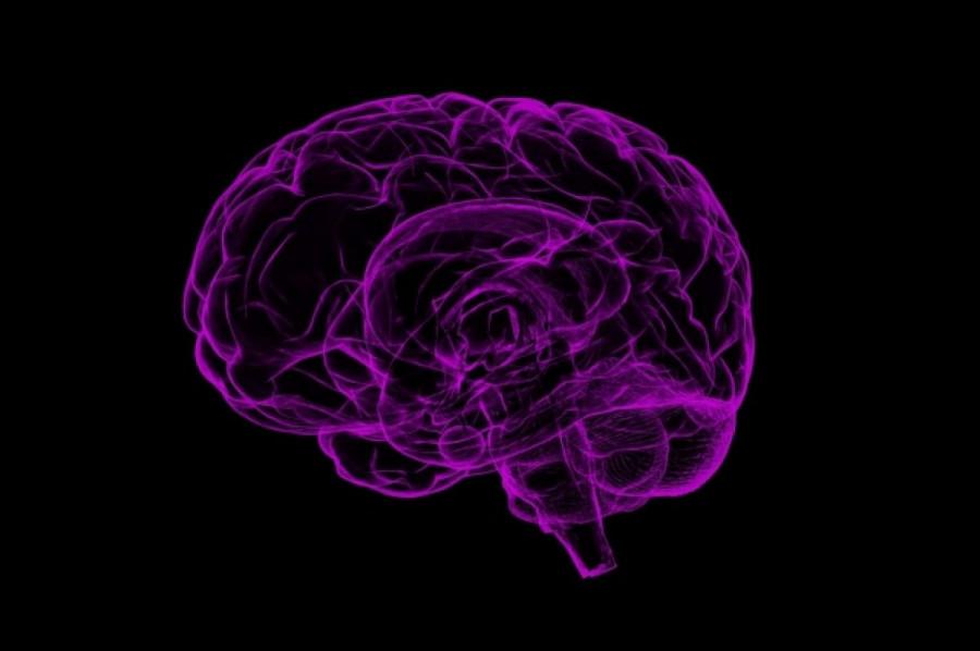 ForPost - Новости : Впервые учёные смогли прочитать мысли неспособного говорить человека