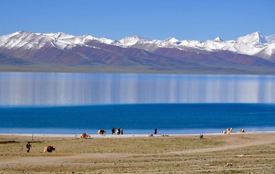 ForPost - Новости : В леднике Тибета выявлены 33 вируса возрастом 15000 лет