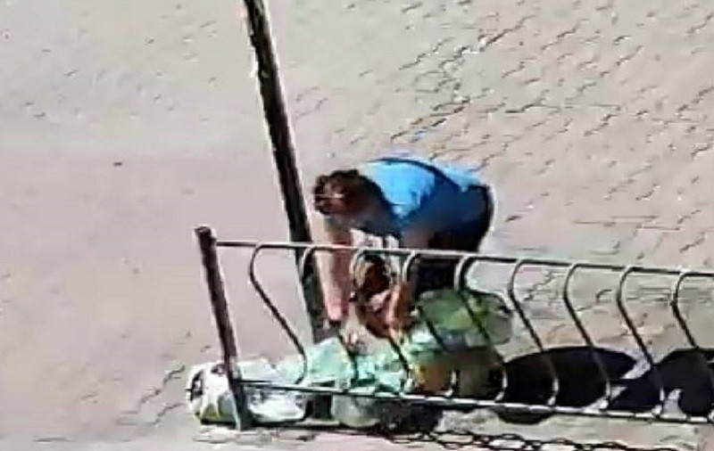 ForPost - Новости : Свалку в центре Севастополя устроили жители и работники рынка