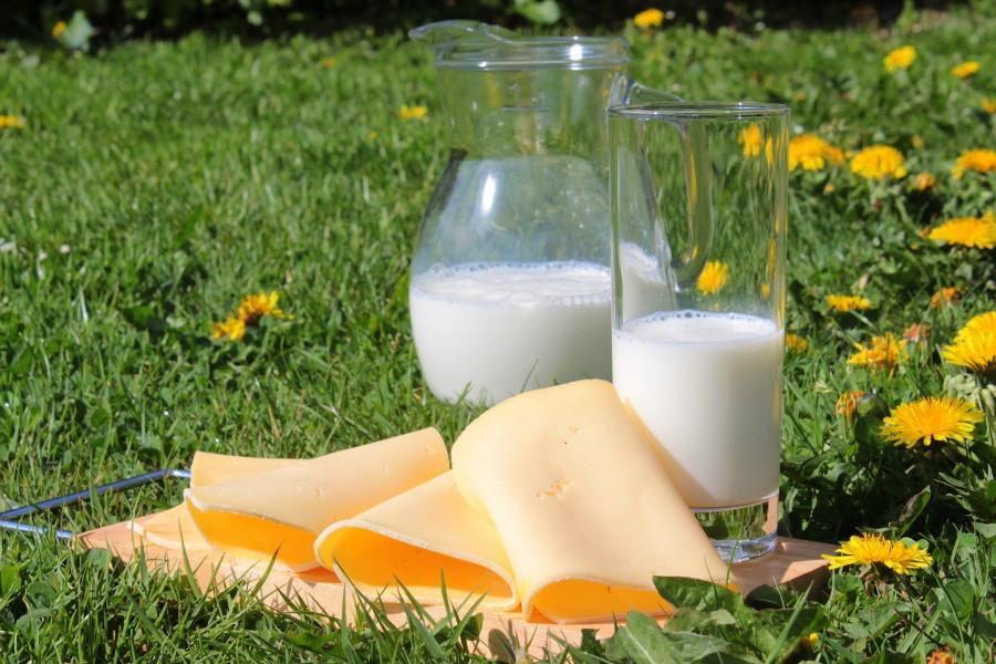 ForPost - Новости : Учёные раскрыли неожиданный побочный эффект от молока