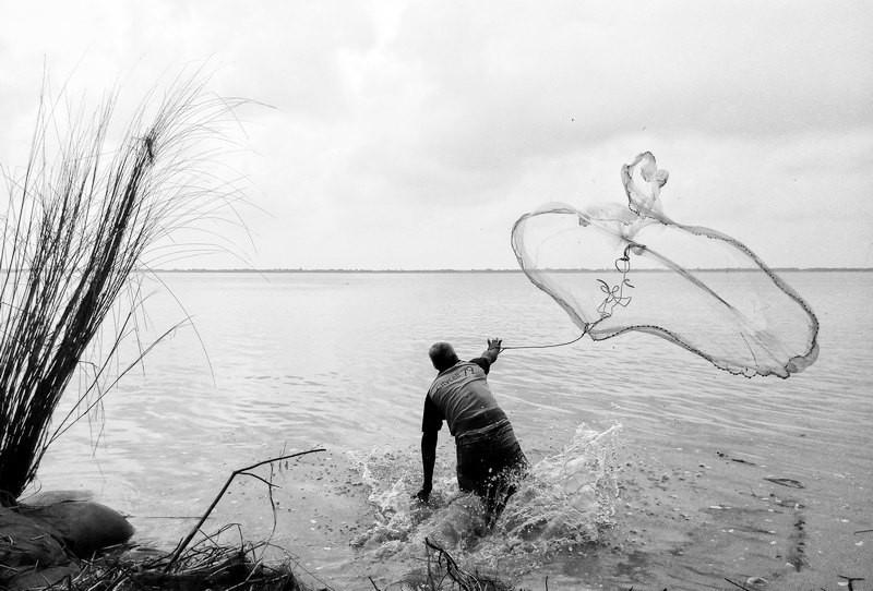 ForPost - Новости : Бюрократия мешает крымским рыбакам ловить пиленгаса и кефаль