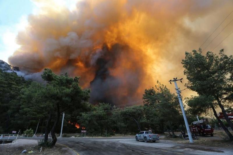 ForPost - Новости : Стало известно, кто и зачем устроил масштабные лесные пожары в Турции