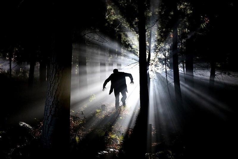 ForPost - Новости : Мужчина держит в страхе все село в горном Крыму