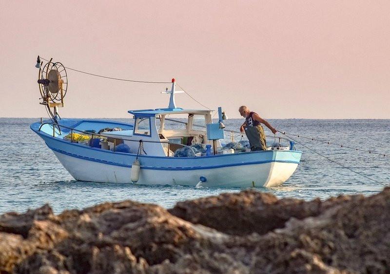 ForPost - Новости : Крымские рыбаки оказались лидерами по добыче рыбы в Азово-Черноморской акватории