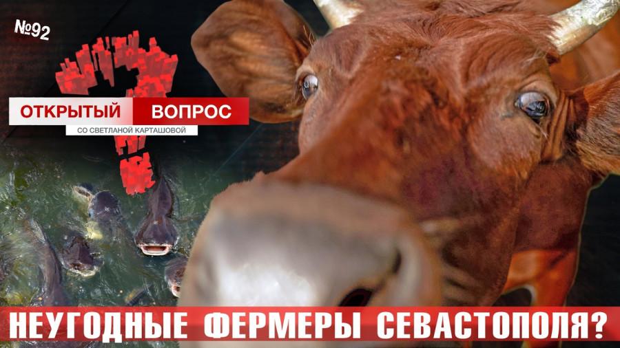 ForPost - Новости : Открытый вопрос: Неугодные фермеры Севастополя