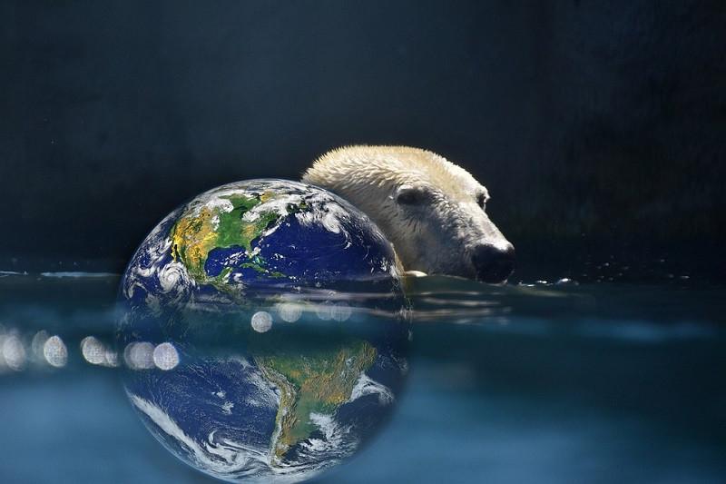 ForPost - Новости : Климатолог рассказал, когда Мировой океан затопит Землю