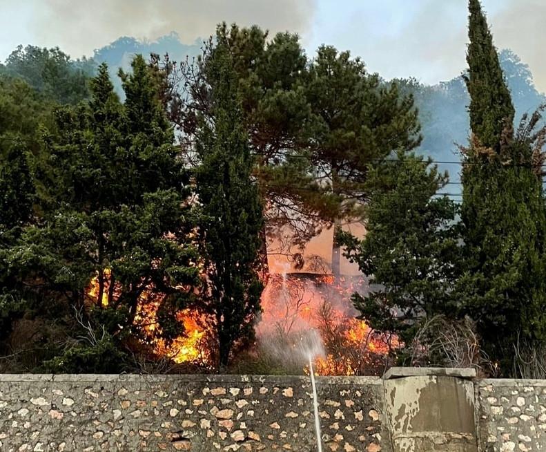 ForPost - Новости : Вспыхнуло на глазах: в Севастополе тушили лес у смотровой над Ласпи