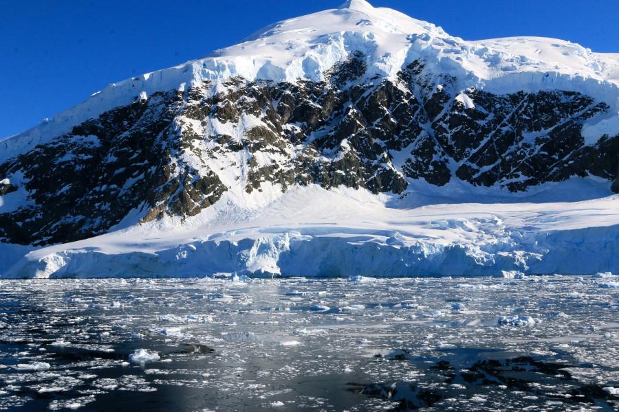 ForPost - Новости : Невероятная находка в Антарктиде поставила учёных в тупик