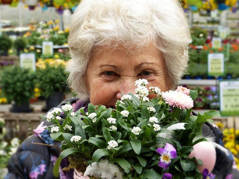 ForPost - Новости : Сегодня российским пенсионерам начислят новую выплату
