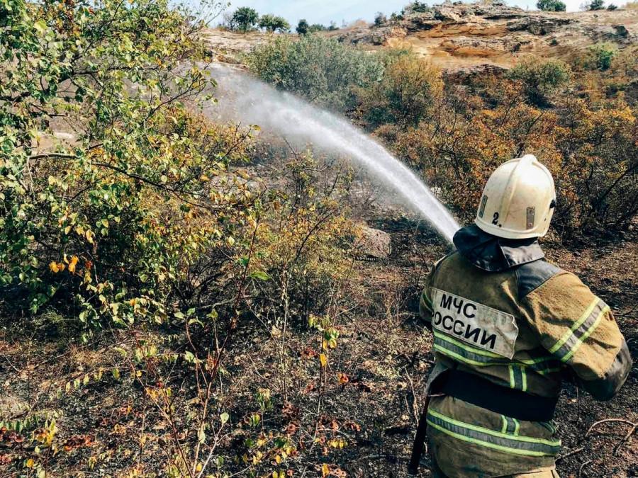 ForPost - Новости : В Севастополе горел гектар зелени