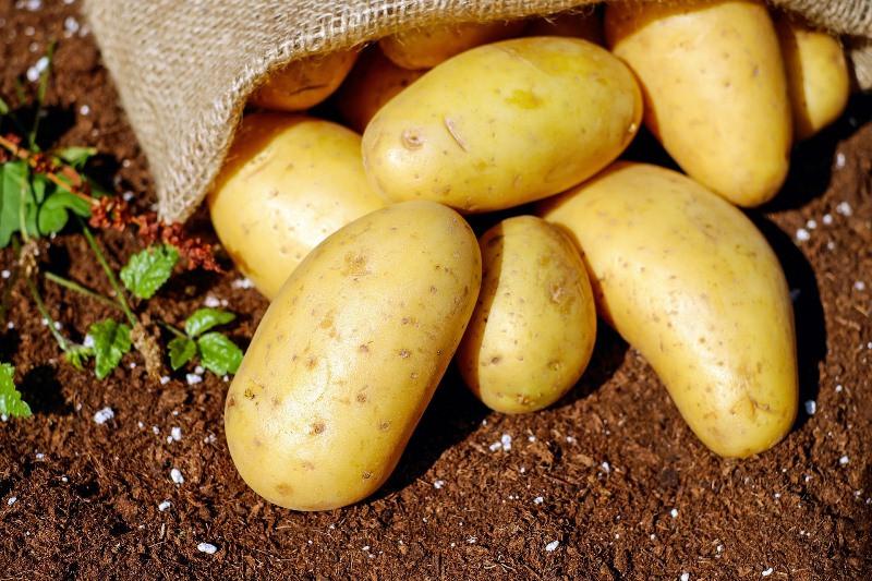 ForPost - Новости : Картофель вдвое подорожал в Крыму за неделю