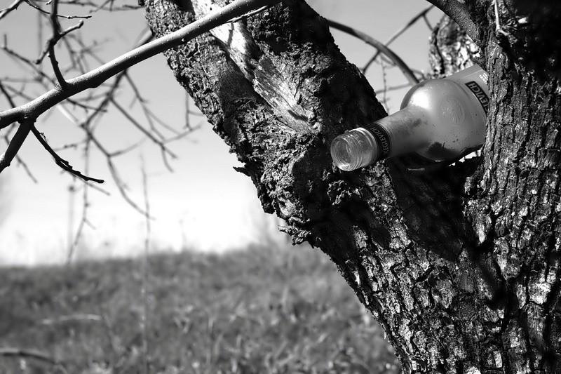 ForPost - Новости : Каждый пьющий россиянин в смертельной опасности