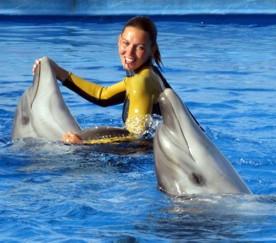 ForPost - Новости : Севастопольский дельфинарий в Артбухте открыл сезон 2011