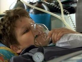 ForPost - Новости : В Севастополе произошло 6 случаев отравлений угарным газом. В вентиляционных трубах нашли останки крыс, голубей и внушительный слой пыли