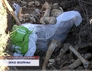 ForPost - Новости : В полях под Балаклавой прямо под открытым небом лежат человеческие кости из разрытых черными археологами могил