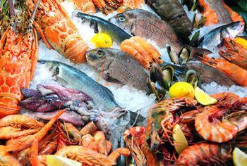 ForPost - Новости : «На нас раньше не обращали внимания»: севастопольские рыбопромышленники просят создать рыбный рынок