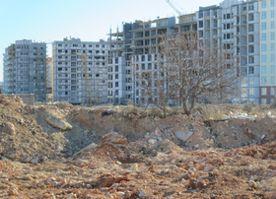 ForPost - Новости : Краснокнижную фисташковую рощу в Севастополе хотят застроить высотками
