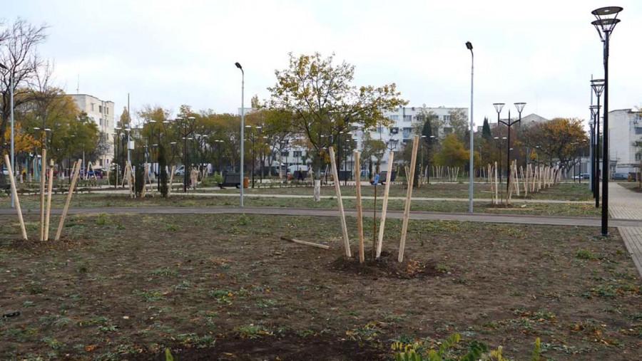ForPost - Новости: «Лысый парк» готов удивить севастопольцев