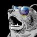 Аватар пользователя Ведмедь