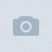 Аватар пользователя Didier Pironi