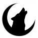Аватар пользователя Ночной волк