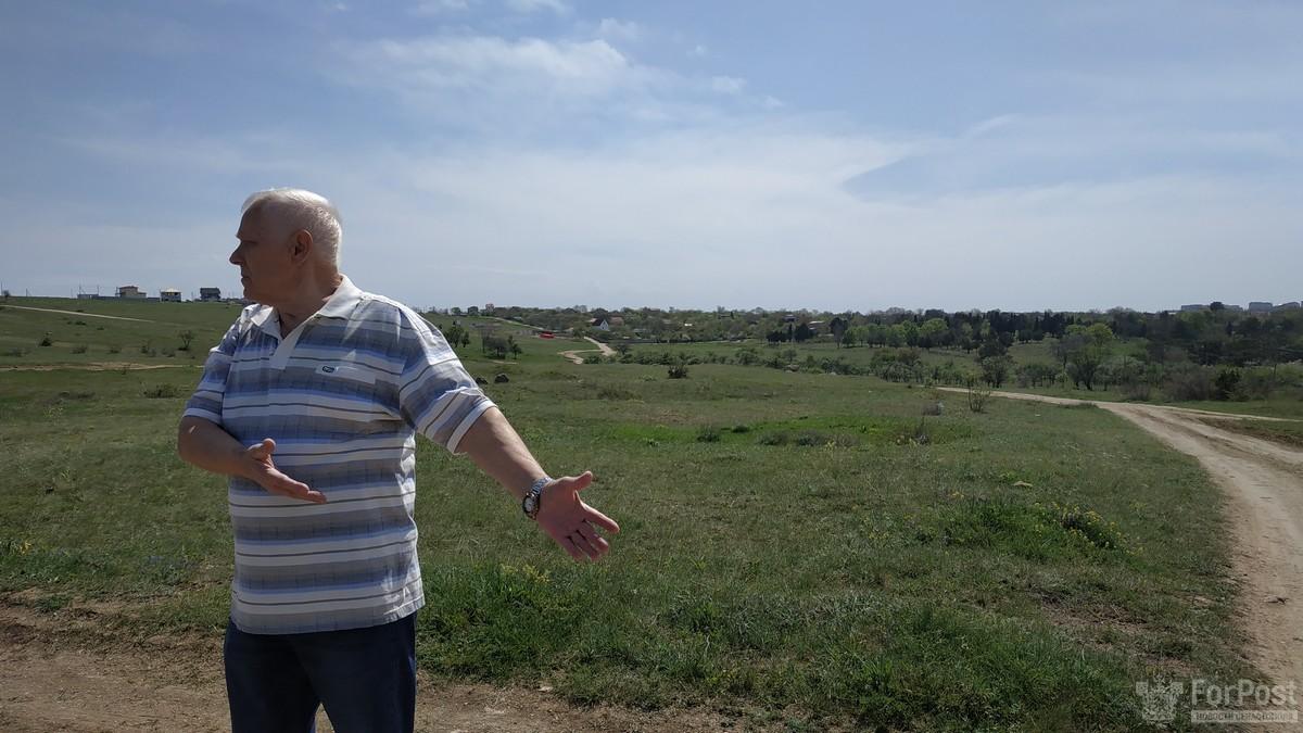 Правительство Севастополя отдало военным лес под застройку