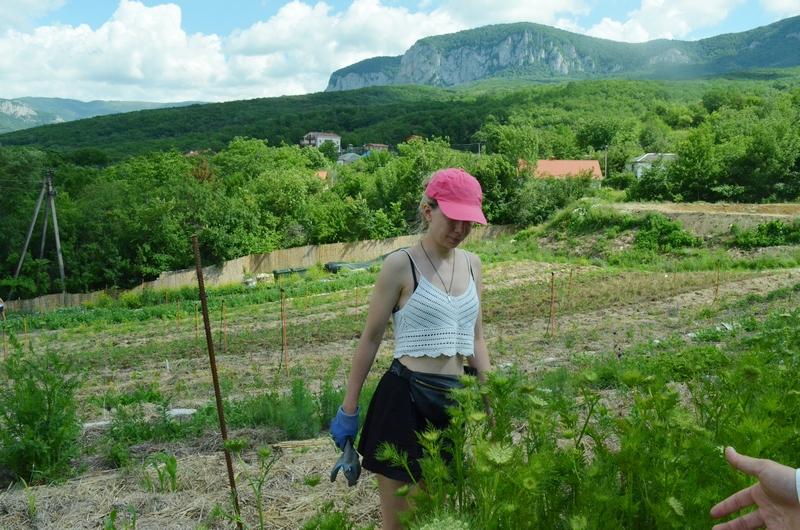 грядки огороды овощи Крым ретритцентр