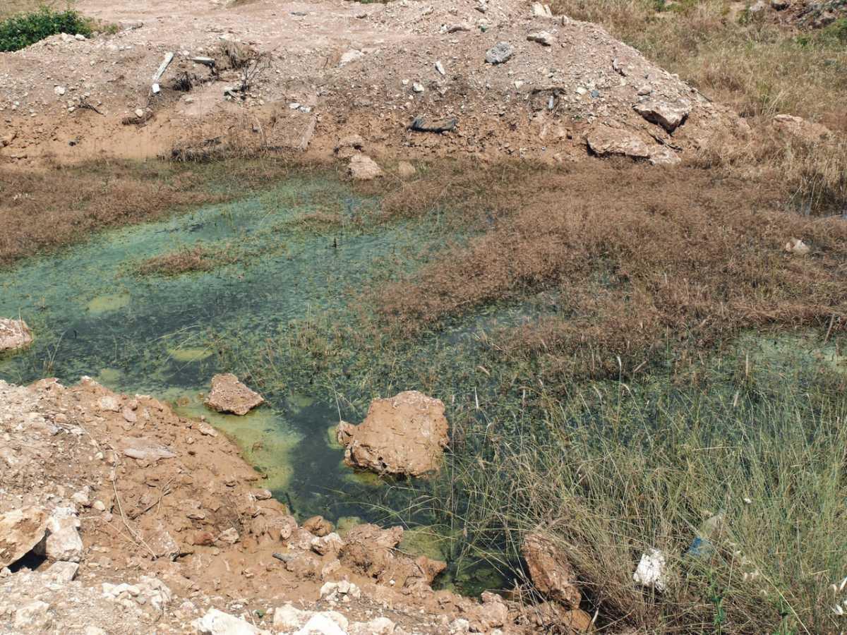 В Севастополе расследуют появление «фекального озера»