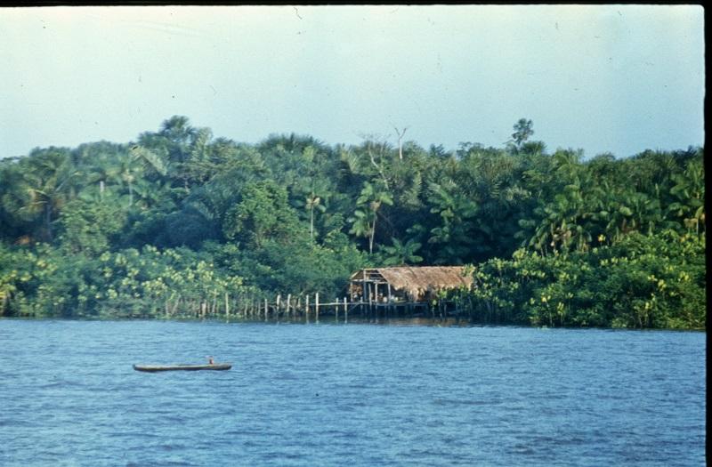 На Амазонке